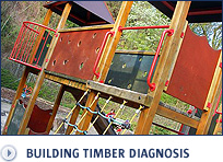 Building timber diagnosis